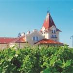 Incentive-Zvonko-Bogdan-Winery
